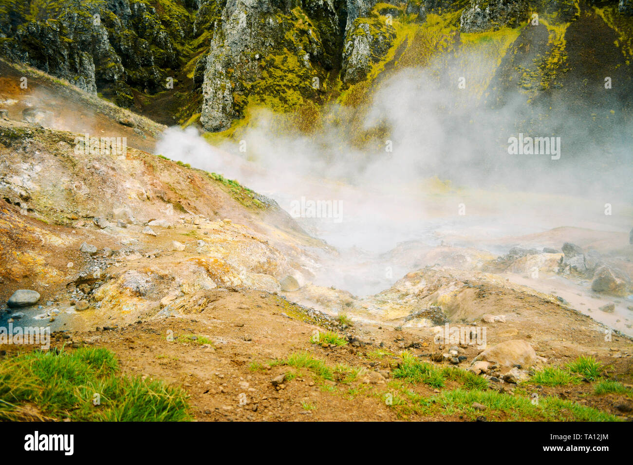 Fumarole field in Namafjall, Iceland. Geothermal beauty landscape. - Stock Image