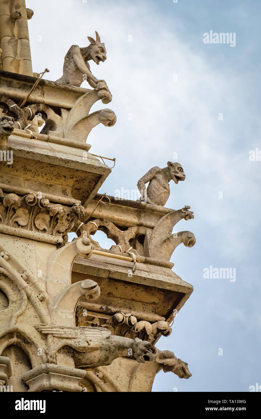 Paris, France - April 18, 2013: Chimeras and Gargoyles at notre Dame cathedral - Stock Image