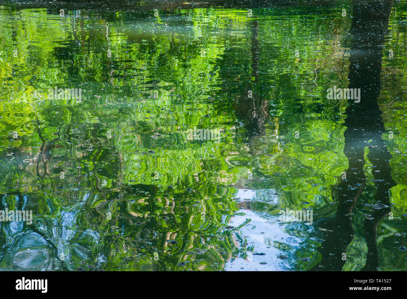 Water reflections. - Stock Image