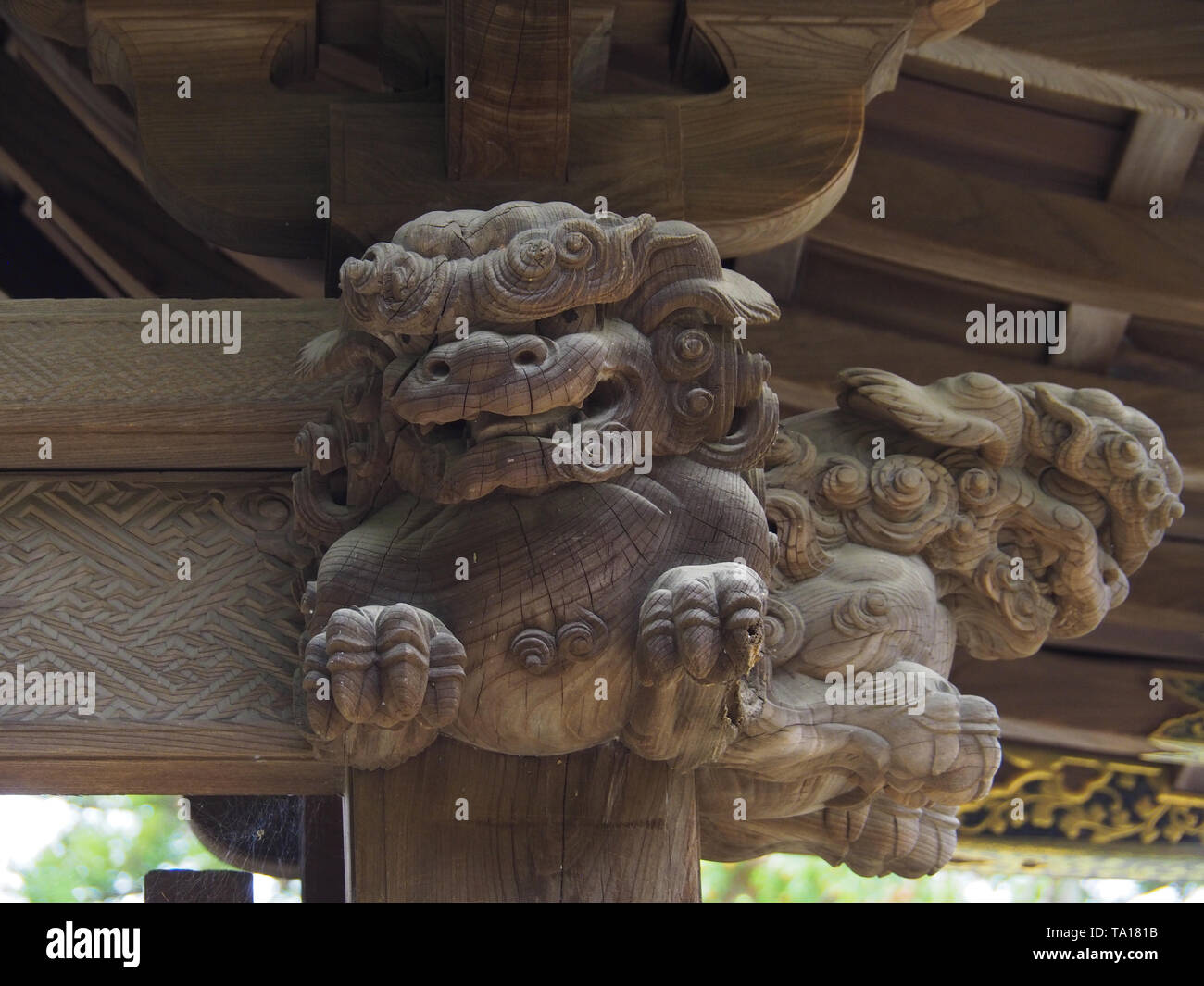 Komainu wood carving at the gate of Engakiji temple - Stock Image
