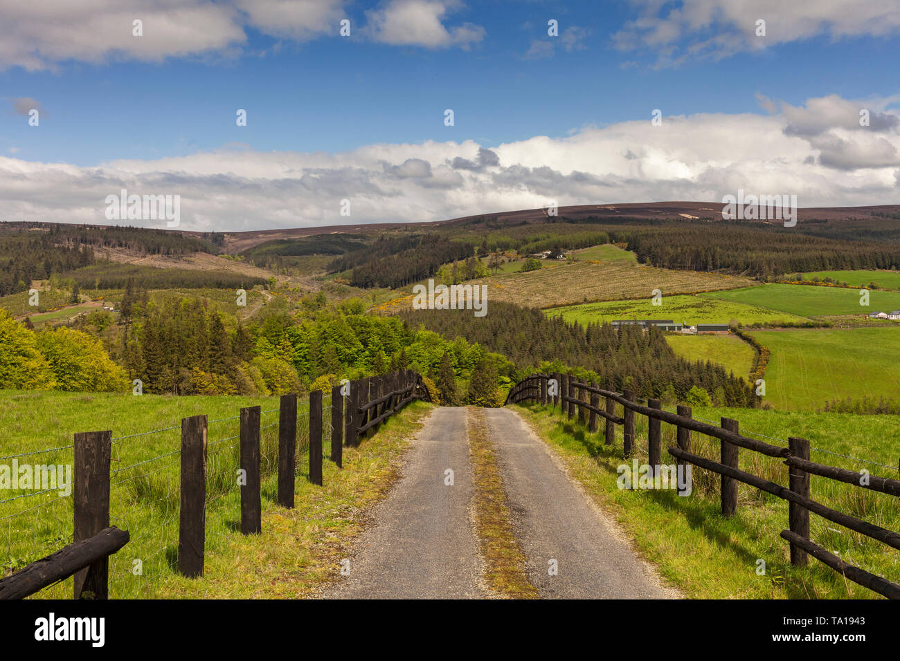 The Slieve Bloom Mountains between Kinnity and Mountrath, County Offaly, Ireland - Stock Image