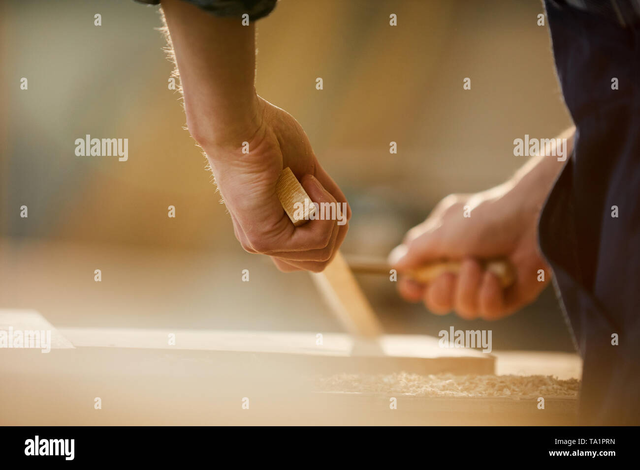Close up of unrecognizable carpenter carving wood while working in joinery lit by sunlight, copy space - Stock Image