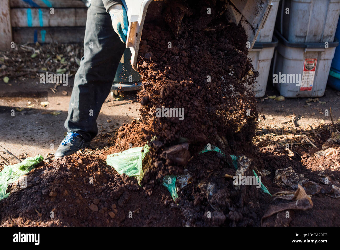 Dumping compostable matter into a heap - Stock Image