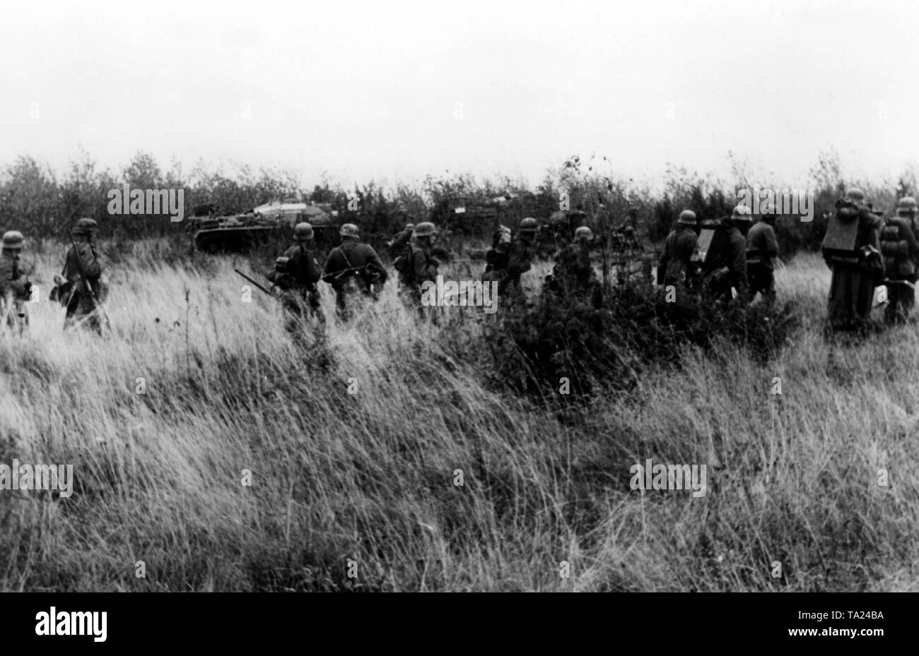A German infantry unit on the march southeast of Lake Ilmen. They are supported by an armored car. Photo of the Propaganda Company (PK): war correspondent Mauch. - Stock Image