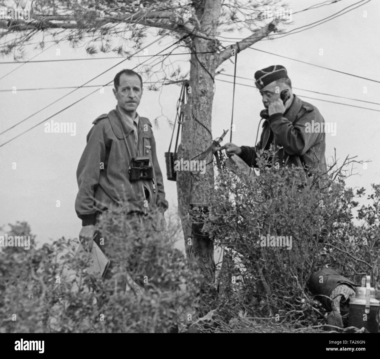Photoof two officers of a Spanishnational regiment command post. The officer on the right phones with a field telephone. A spruce serves as a line terminal. - Stock Image