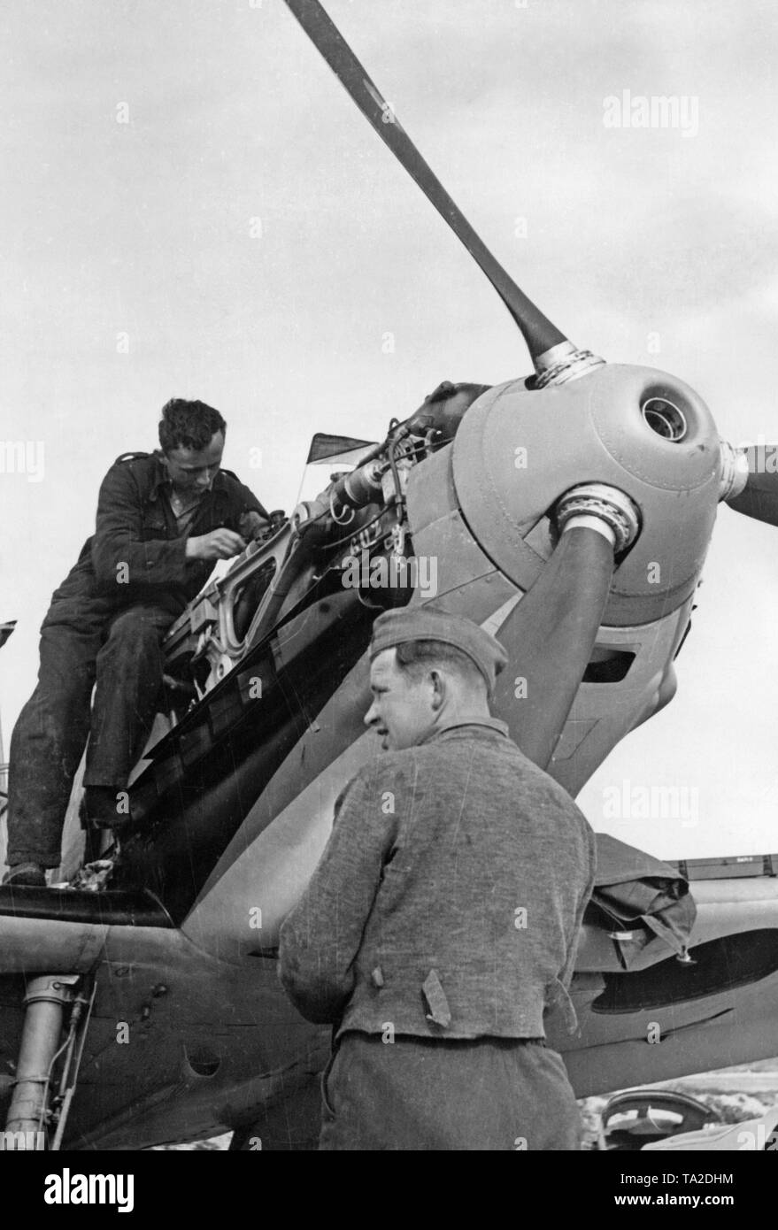 Photo of two mechanics of the Luftwaffe while repairing the engine of a Messerschmitt Bf 109 B-series at an airfield in Spain. Here, the muzzle of the machine gun in the hollow propeller nose. - Stock Image