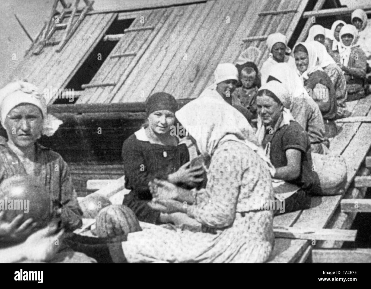 German settlers in Russia until 1945, USSR - policy Stock Photo
