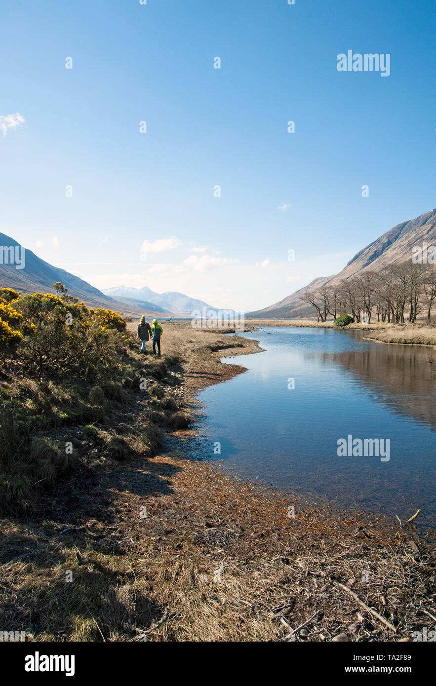 Hikers alongside the River Etive which runs through Glen Etive reaching Loch Etive at Gualachulain. In the distance is snowcapped Ben Cruachan. - Stock Image