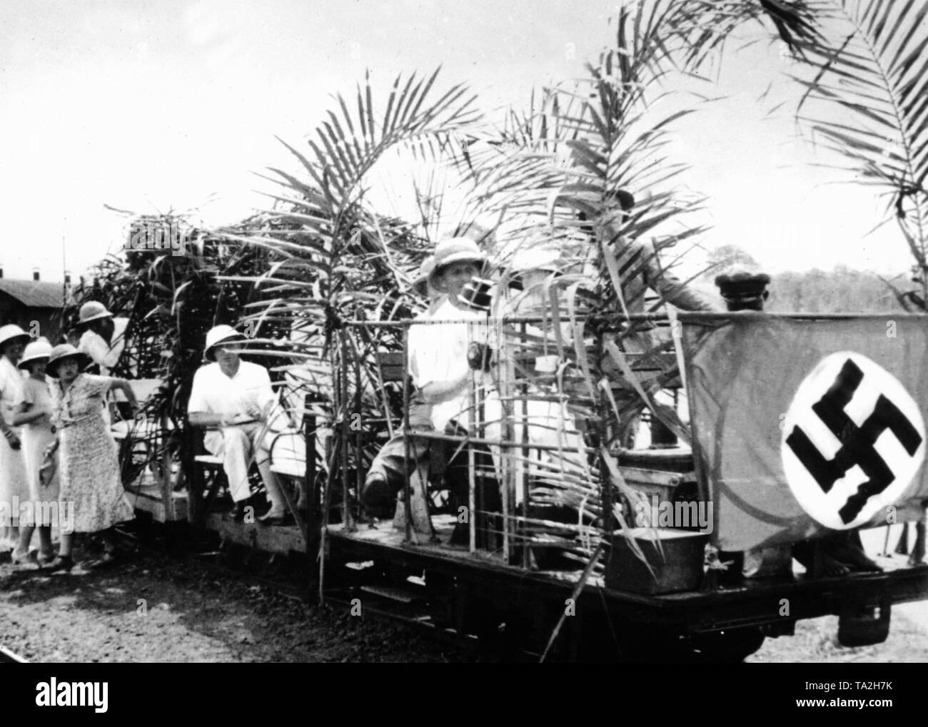 Kamerun: 1884-1914, Kolonien: Deutsch-Westafrika, Deutschland, Deutsches Reich, , 01.01.1884-31.12.1914 | Cameroon from 1884 until 1914, colonies: German West Africa, Germany, empire, 01.01.1884-31.12.1914 - Stock Image