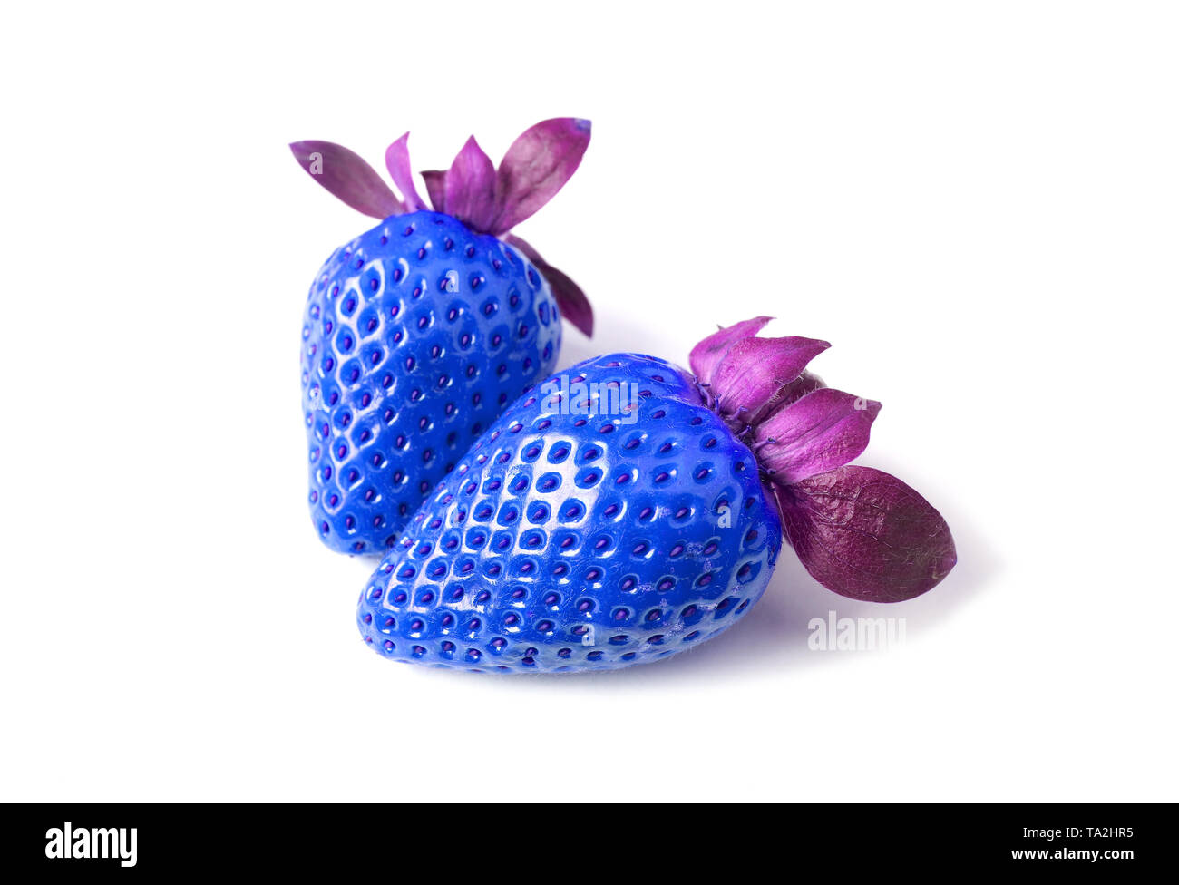 Pair of Fresh Strawberries in Vibrant Blue and Purple Isolated on White Background - Stock Image