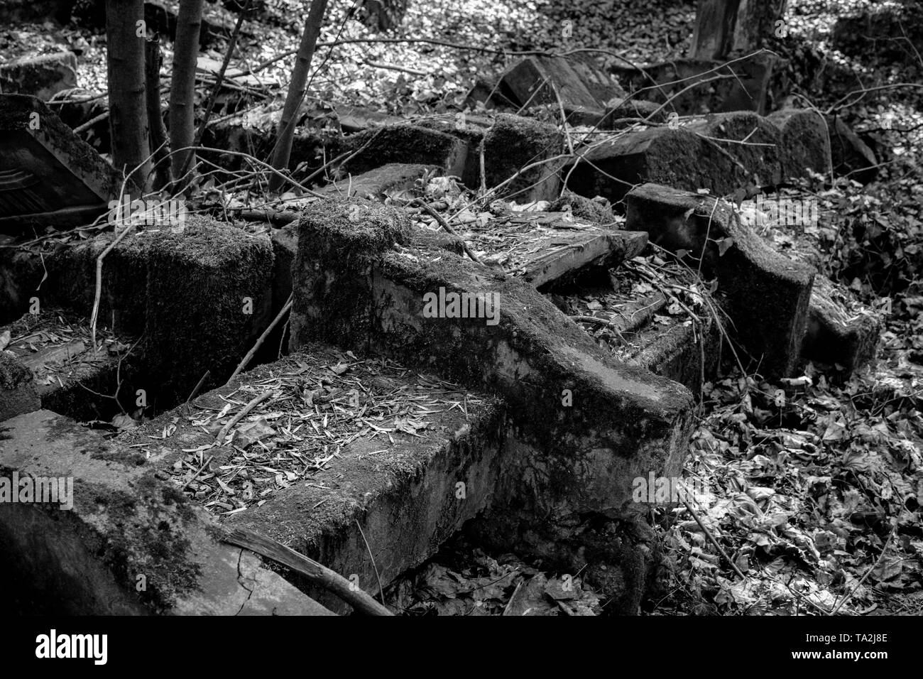 black and white photo of old jewish cemetery in the city of Czestochowa in Poland - Stock Image