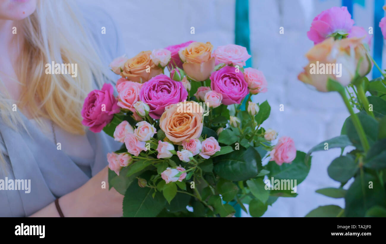 Professional florist making beautiful bouquet at flower store - Stock Image
