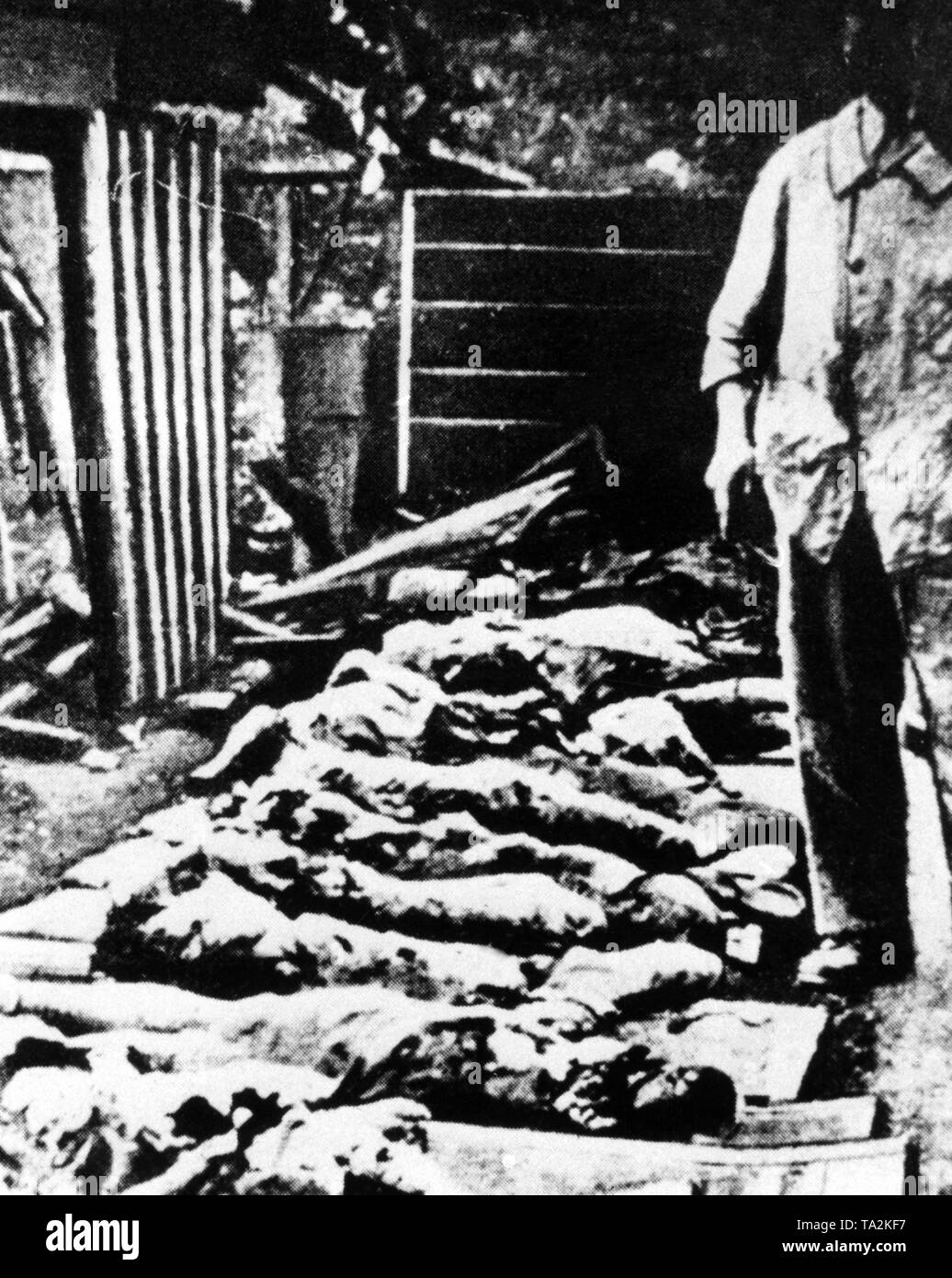 War crime in Oradour: Picture shows burned dead bodies in the church of Oradour. - Stock Image