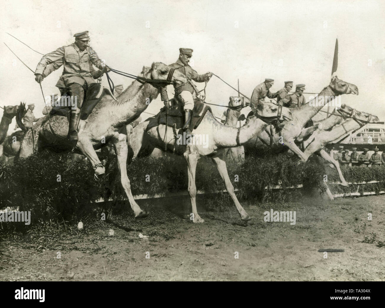 The Camel Corps of the German Schutztruppen were mainly used during the battles against the Herero. The photo shows camel riders during an obstacle race at a training (undated shot). - Stock Image