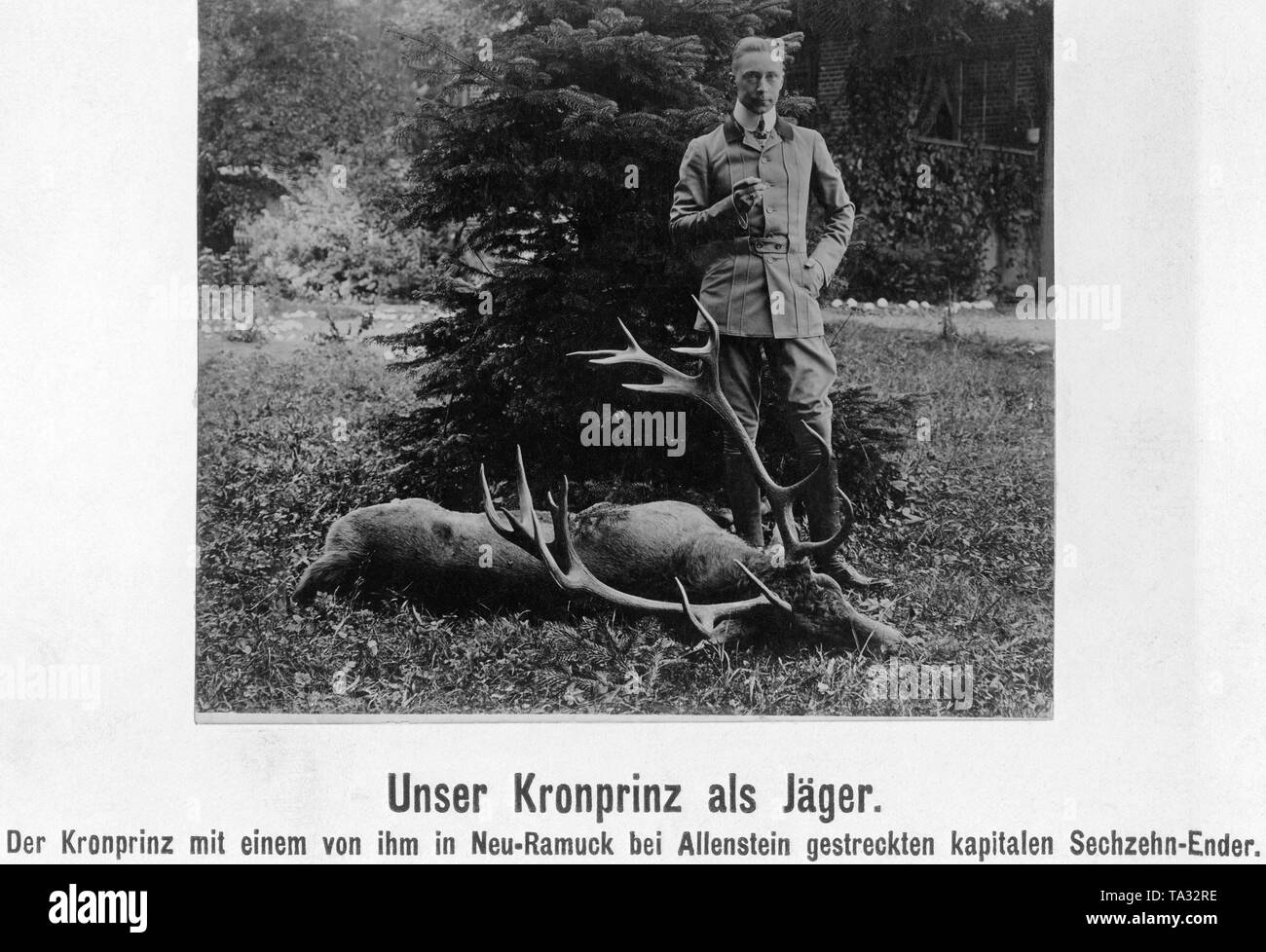 The Crown Prince with a sixteen pointer shot by him in Neu-Ramuck near Allenstein. - Stock Image