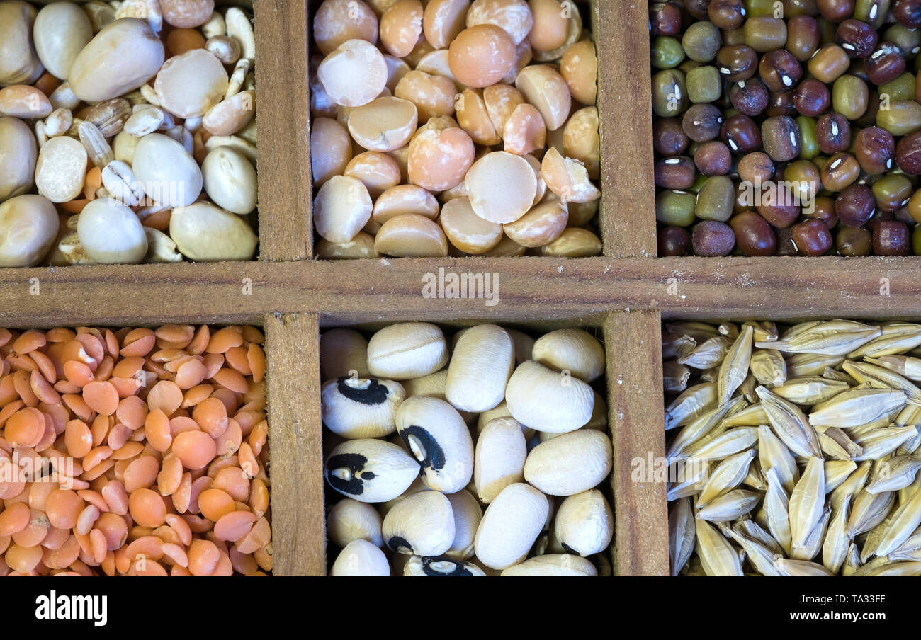 Different dry peas and lentils in wooden square compartments Stock Photo