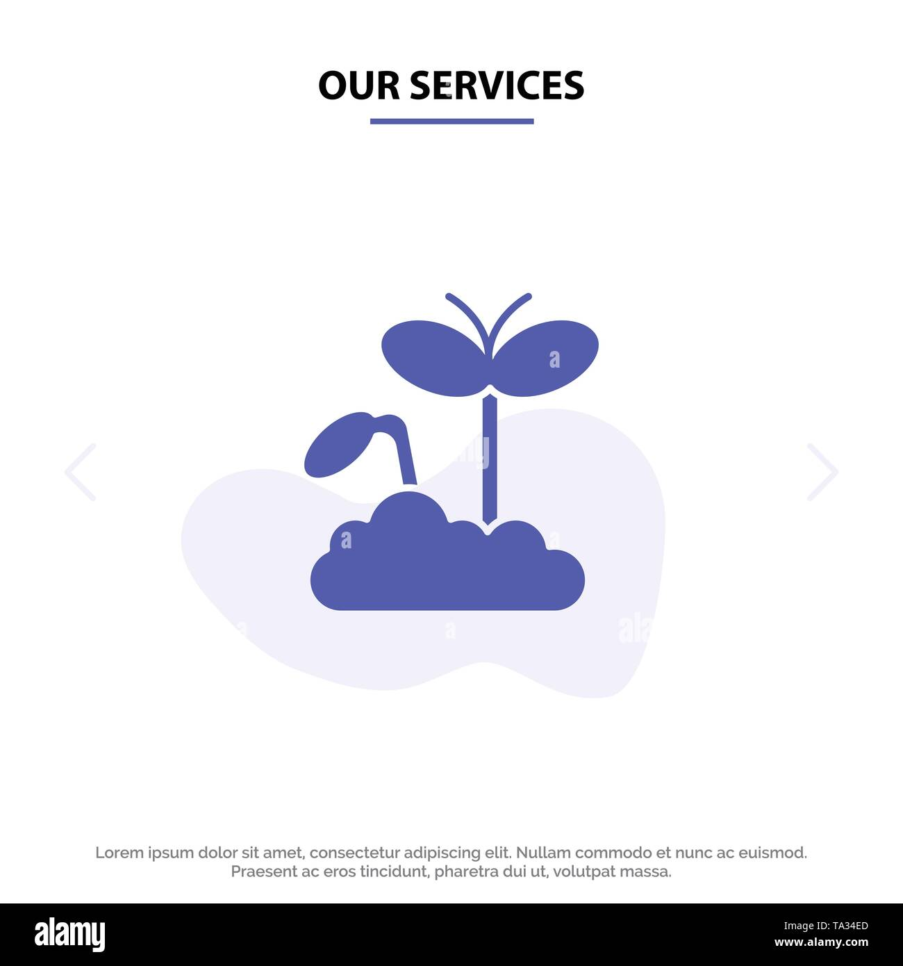 Our Services Growth, Increase, Maturity, Plant Solid Glyph Icon Web card Template - Stock Image