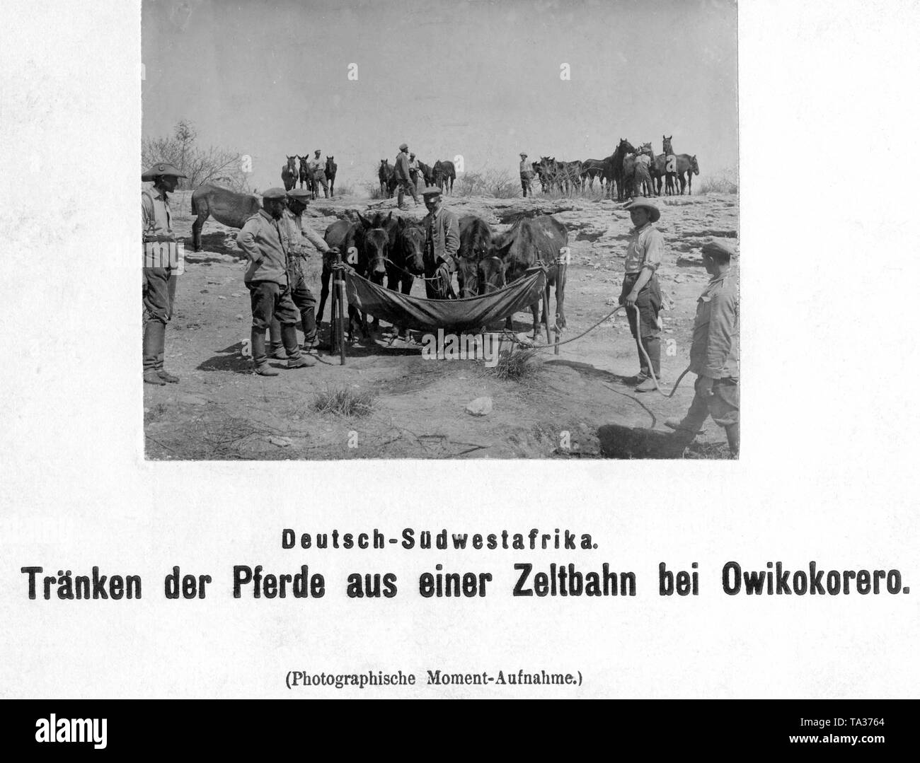 Soldiers of the Schutztruppe water their horses using a tarpaulin at Owikokorero (German Southwest Africa). - Stock Image