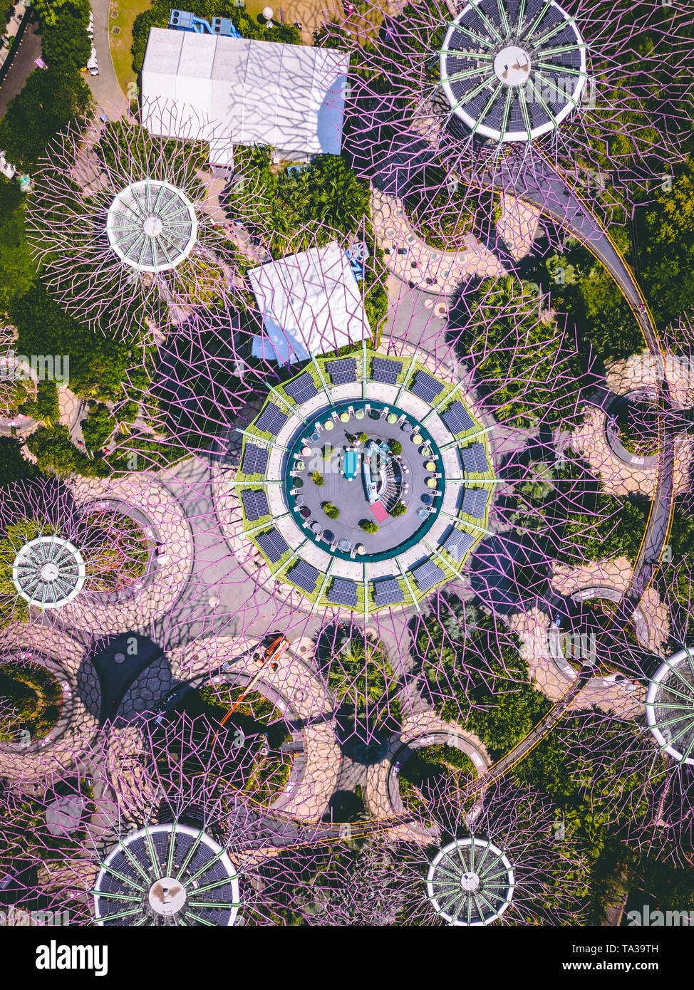 Aerial Shot of the Supertree Grove in Gardens By The Bay, Singapore - Stock Image