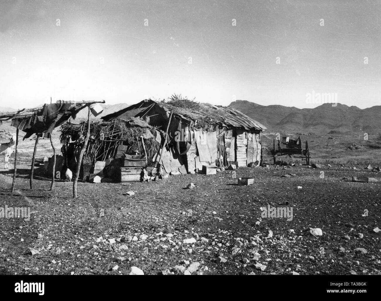 Pondoks, traditional dwellings of Damara people, in the open field in front of a ridge in the region of the former German colony German Southwest Africa. Next to the pondok is a wooden cart. The settlement is located in the Auesbergen on the grounds of a farm operated by Germans. - Stock Image
