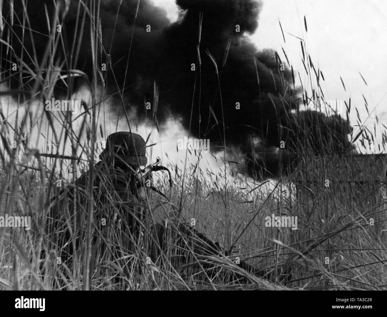 A German soldier with his Mp-40 lying on a corn field. Stock Photo