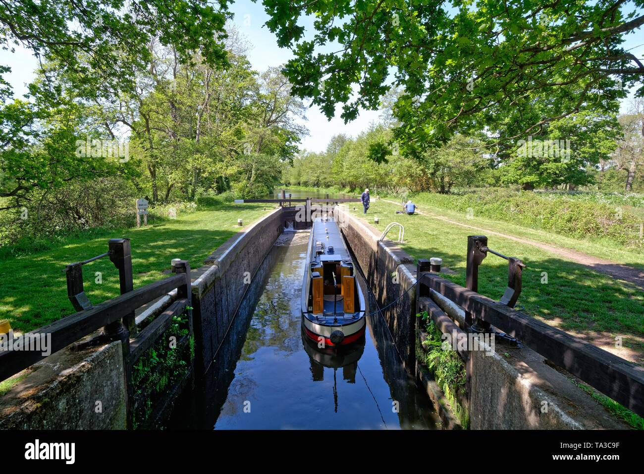 A narrow boat passing through Newark lock on the River Wey Navigation near Ripley Surrey England UK - Stock Image