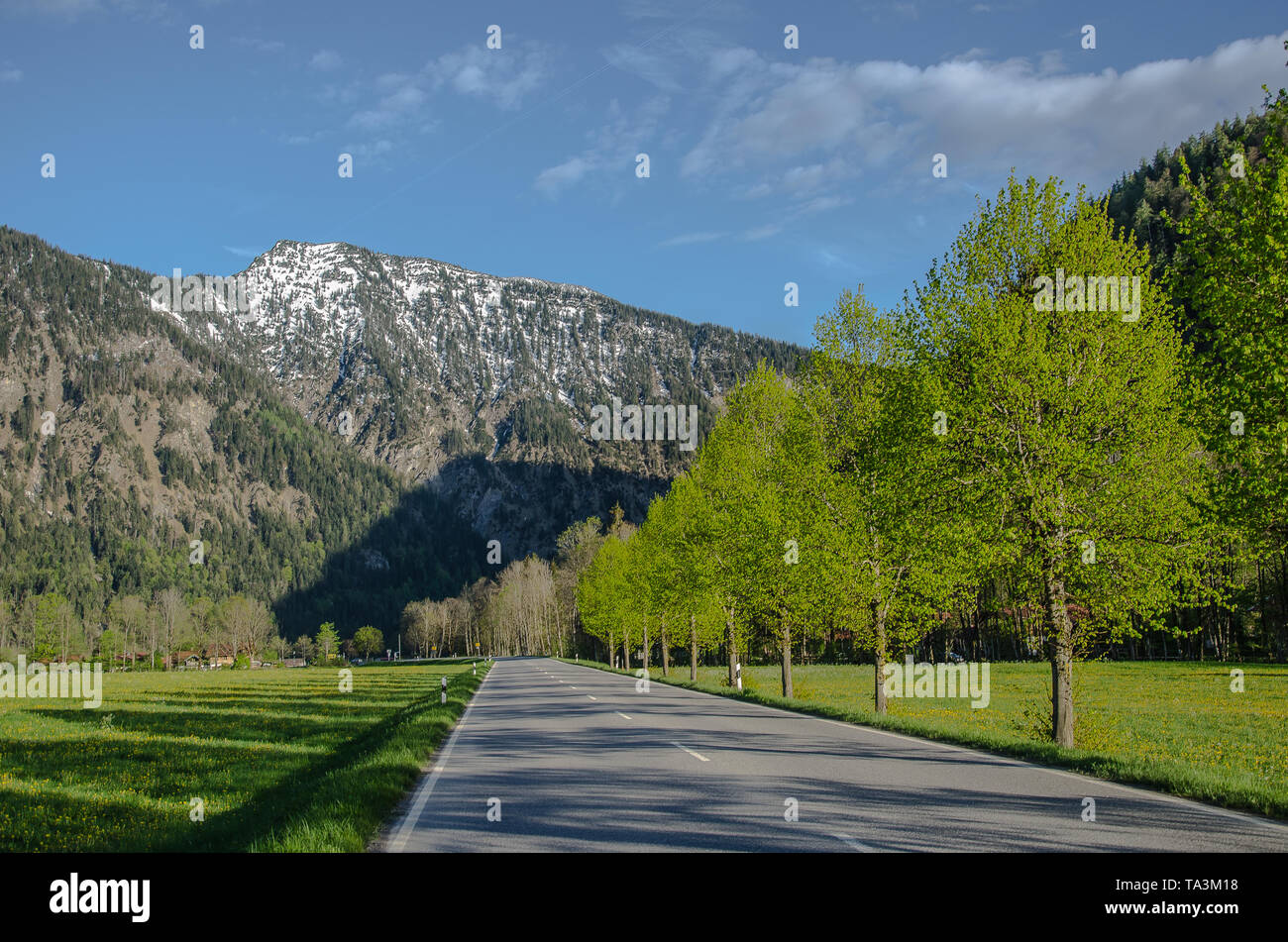 The driveway of Bayrischzell is about 5km long and a good 8% slope to handle well. Partly the road even offers a bike path. - Stock Image