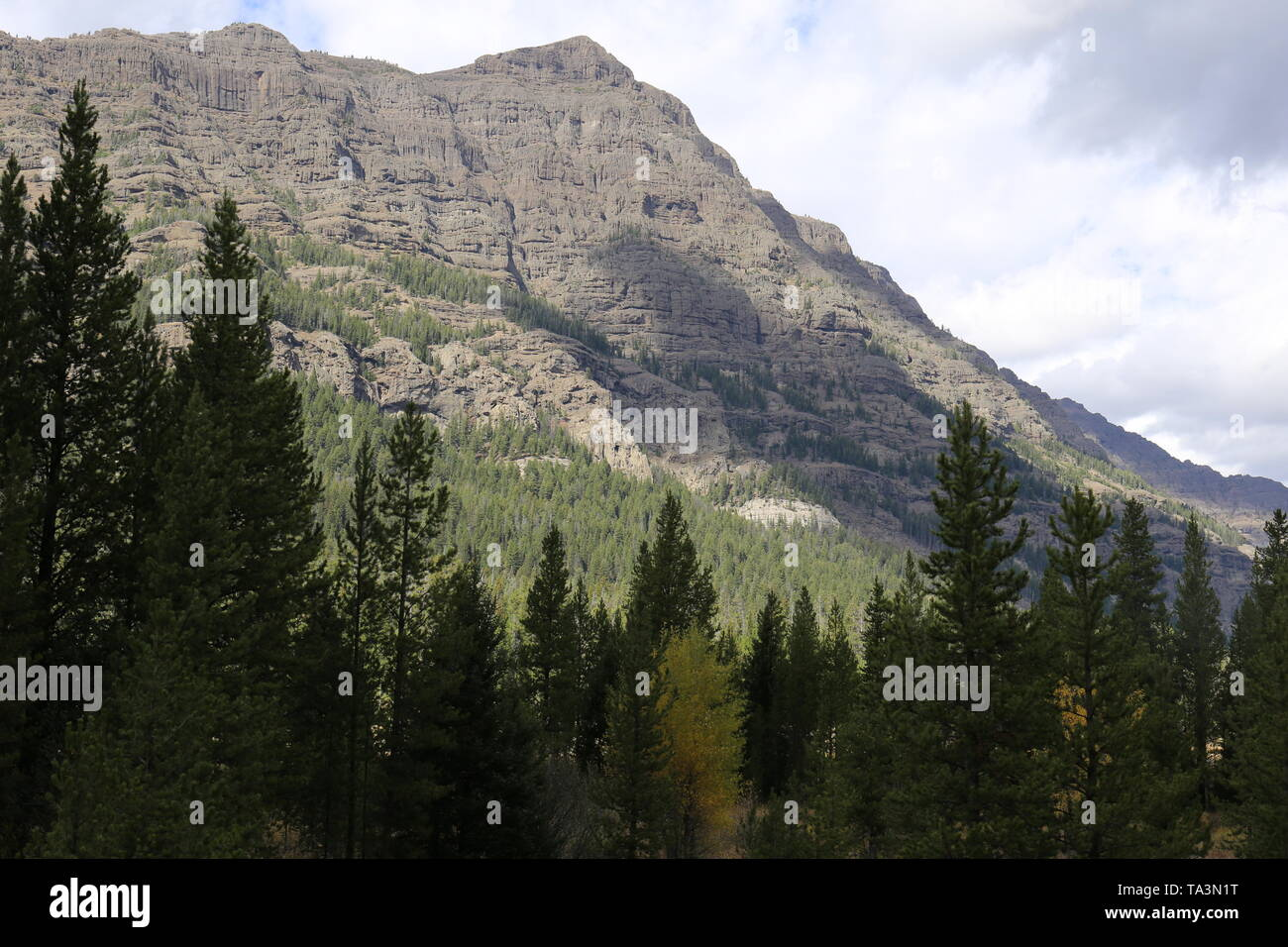 Steep mountain with evergreen trees in foreground - Stock Image