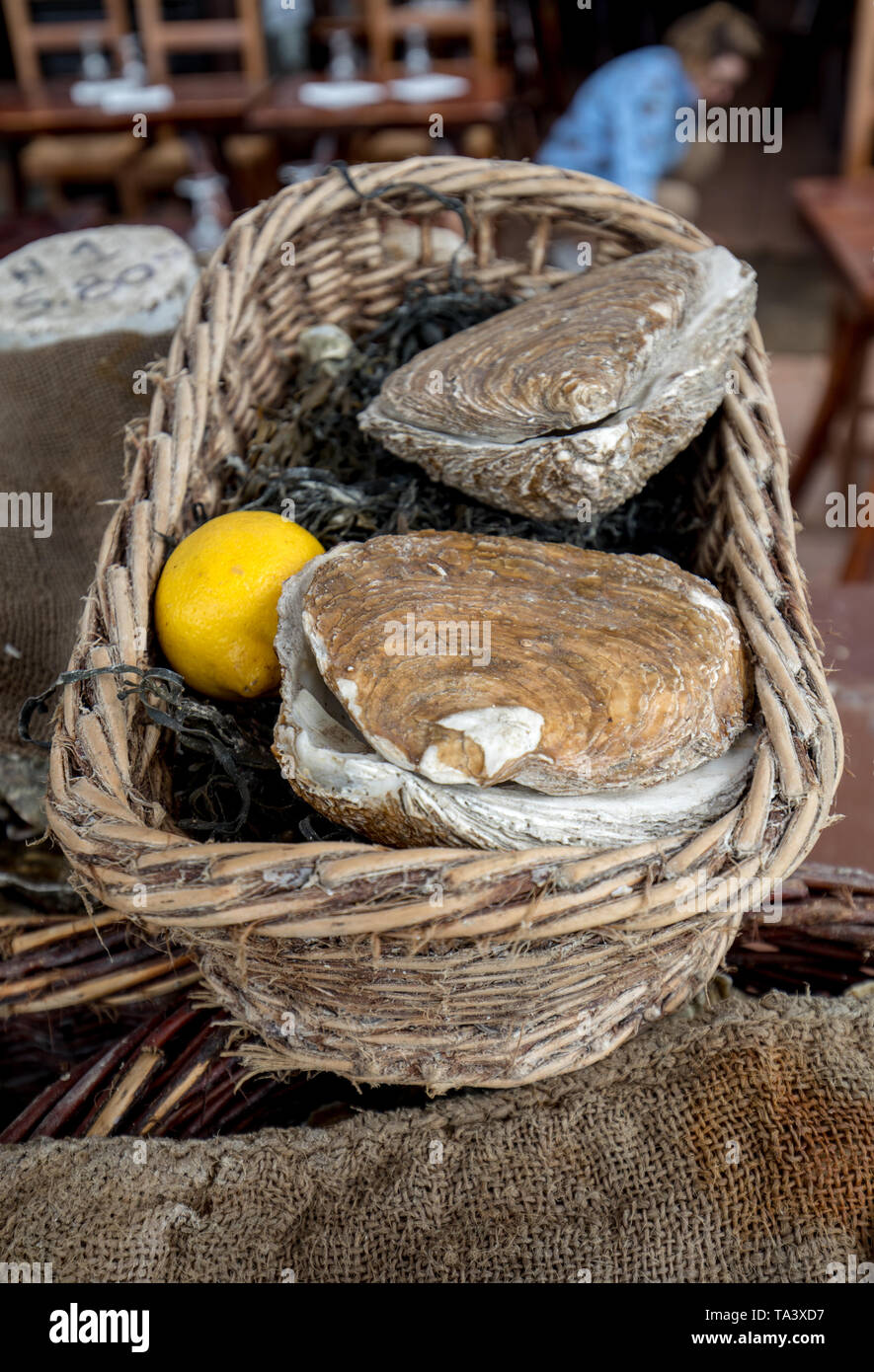 Fresh raw oysters on outdoor street market in Cancale town in Brittany, France - Stock Image