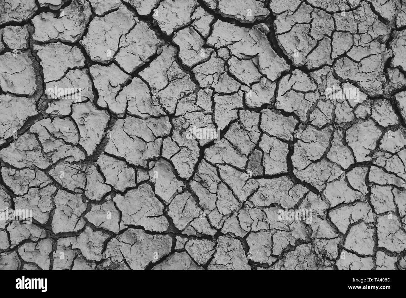 Land with dry and cracked ground. Global warming background - Stock Image