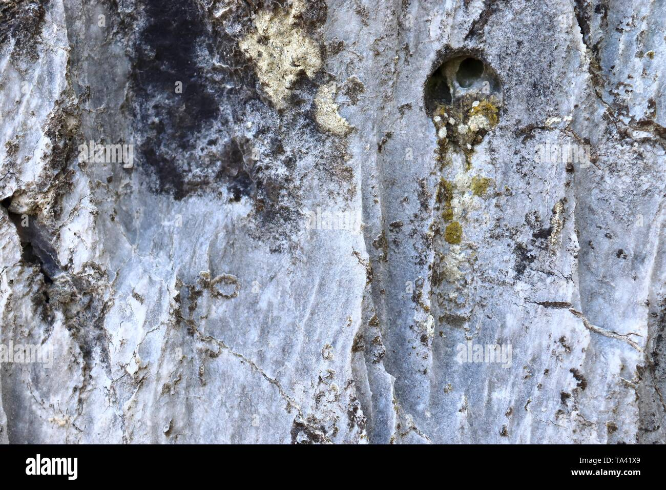 Detailed close up texture shots of the lime mountains surface in northern germany - Stock Image