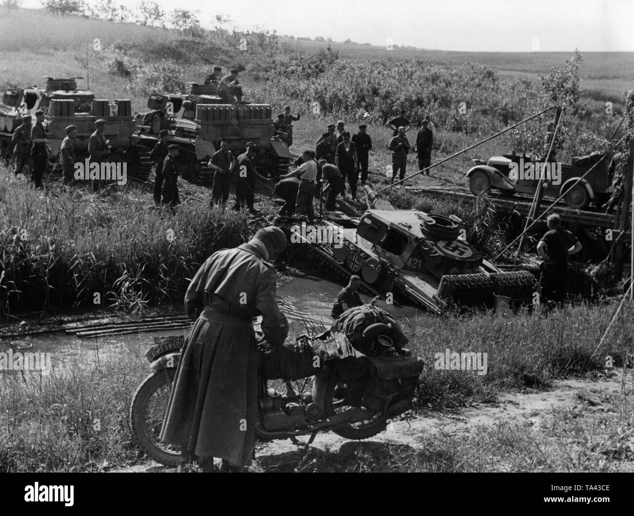 Grunt Black and White Stock Photos & Images - Alamy