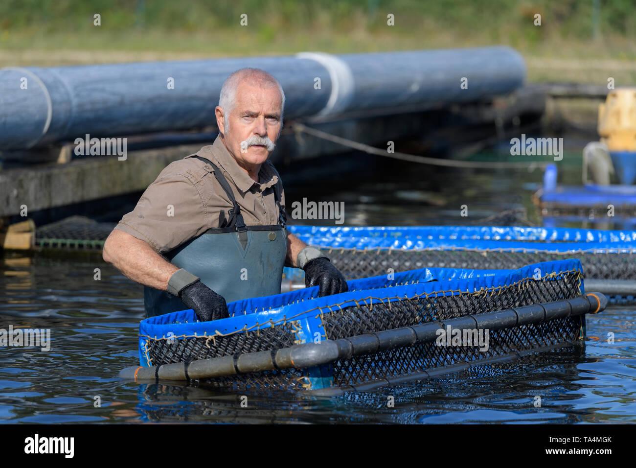 senior worker at a fishfarm - Stock Image
