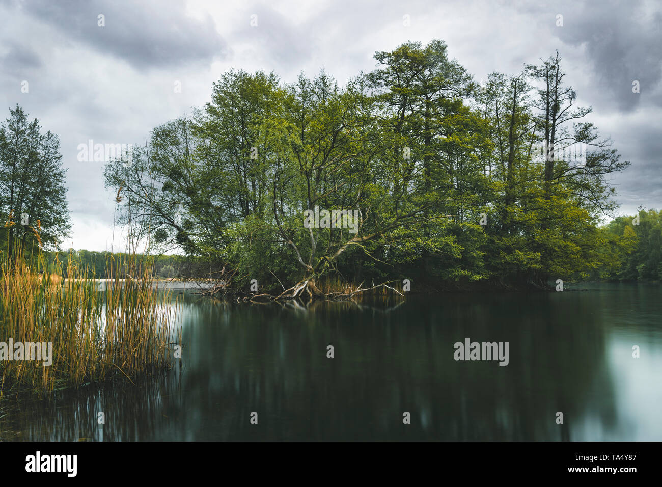 Nymphensee, the cleanest lake of Brandenburg. - Stock Image