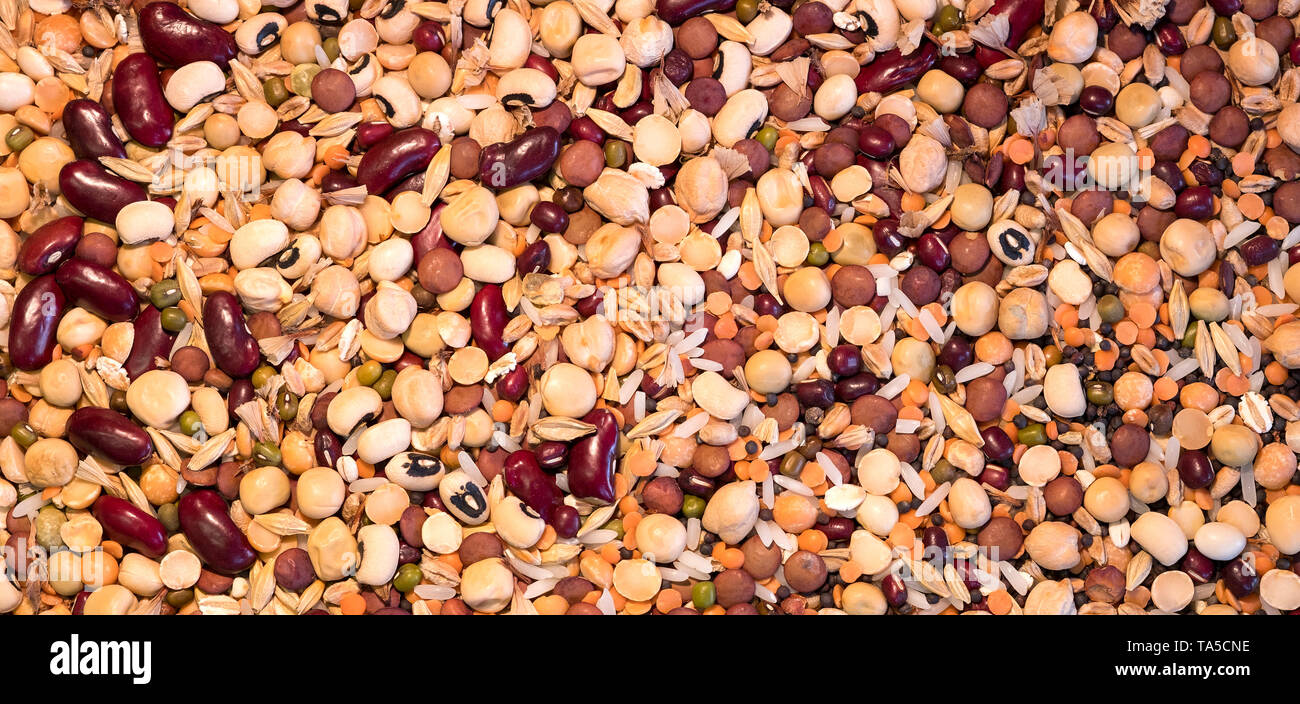 Mixed dry seeds, chick peas, lentils and beans Stock Photo