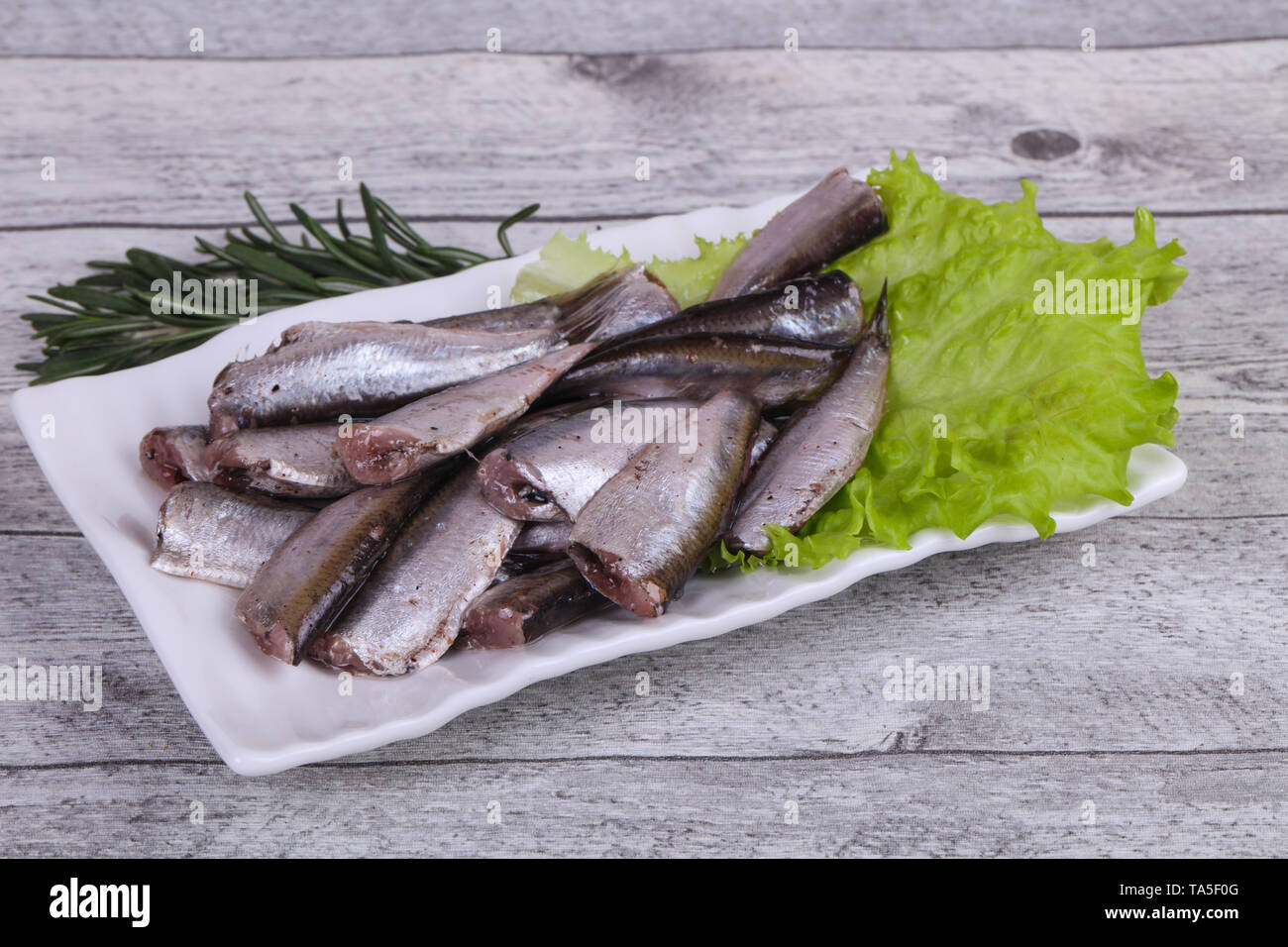 Anchovy fish snack in the bowl served salad leaves and rosemary - Stock Image