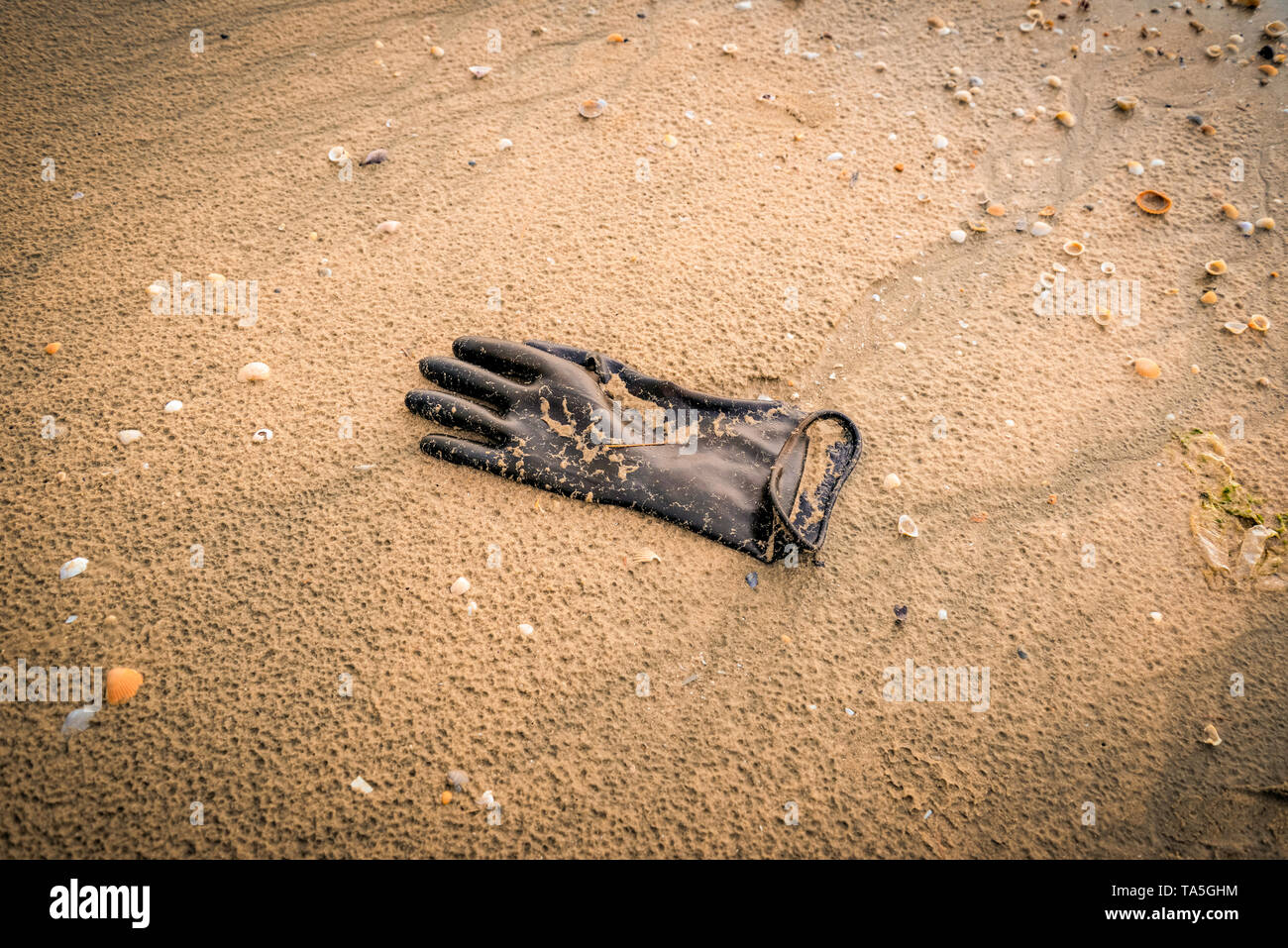 glove on the beach / sea water pollution with plastic glove on sand in the beach save the earth concept - Stock Image