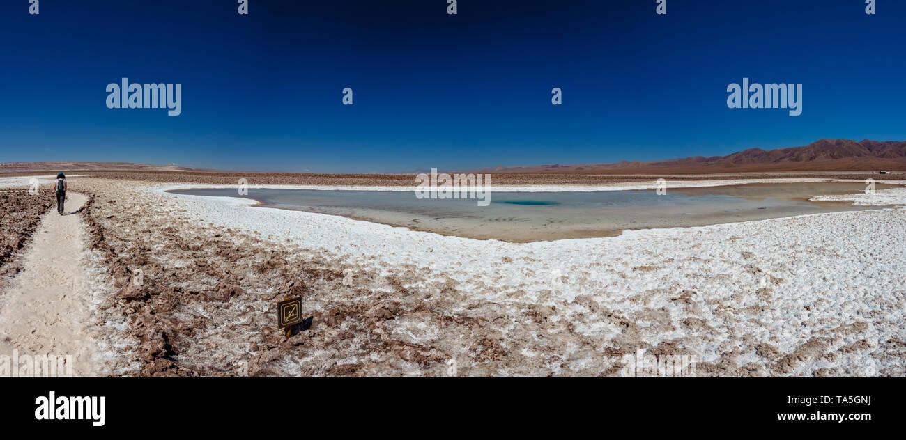 Rear view of tourist walking along Baltinache salar and hidden lagoons - Stock Image