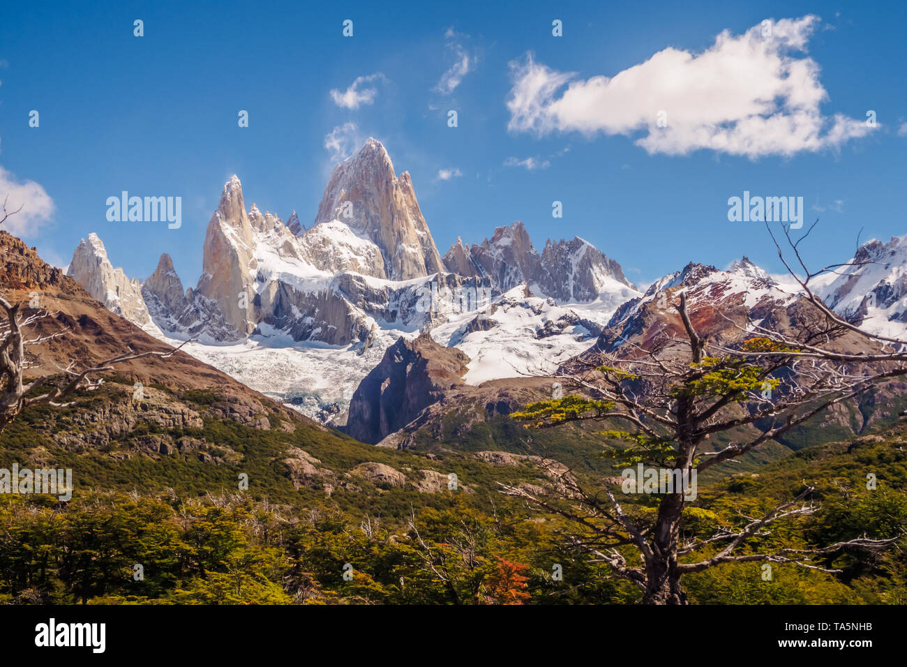 Mount Fitz Roy in the Glacier National Park on a cloudy day with some clouds. El Chalten the Andes mountain range - Stock Image