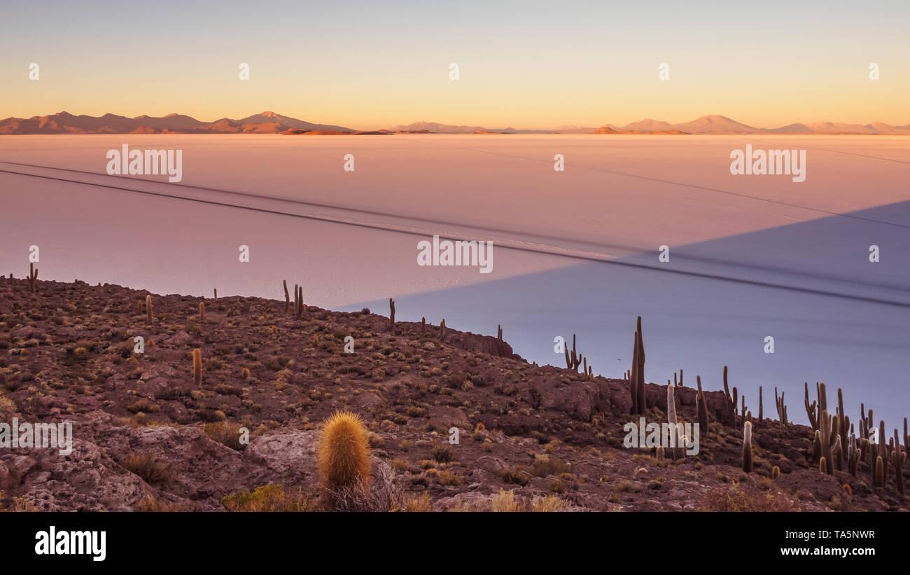 View of the Salar de Uyuni at sunrise from the island Incahuasi in Bolivia. Cactus on the island - Stock Image