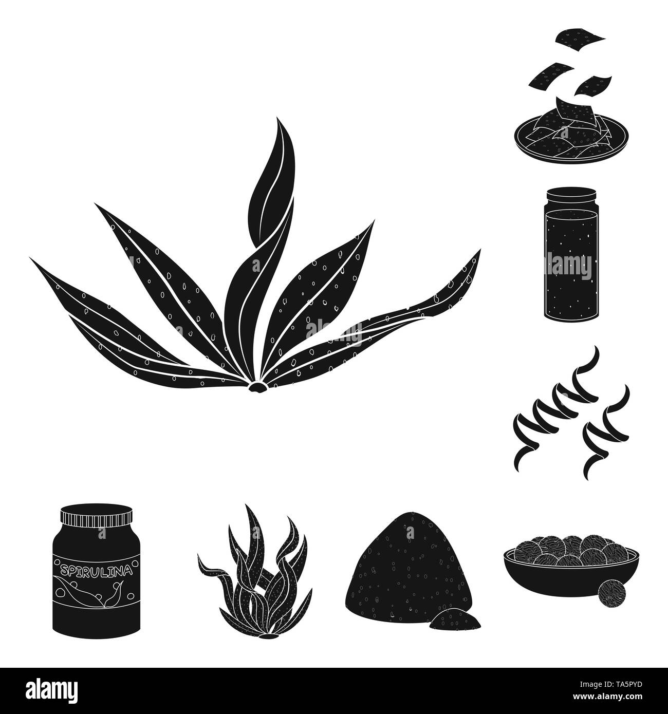 vector design of grass and natural symbol set of grass and seaweed vector icon for stock stock vector image art alamy alamy