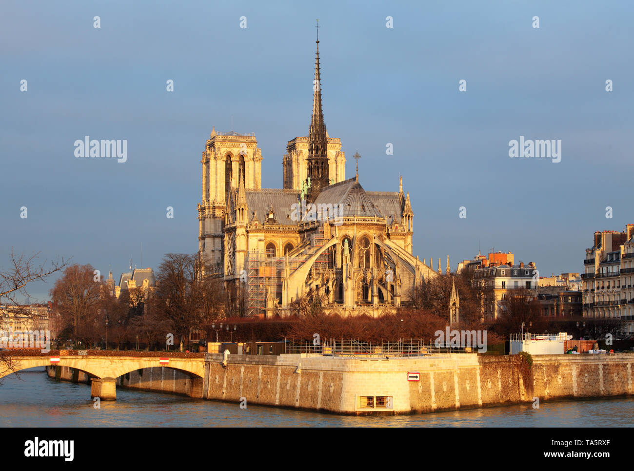 Notre Dame at sunrise - Paris, France - Stock Image