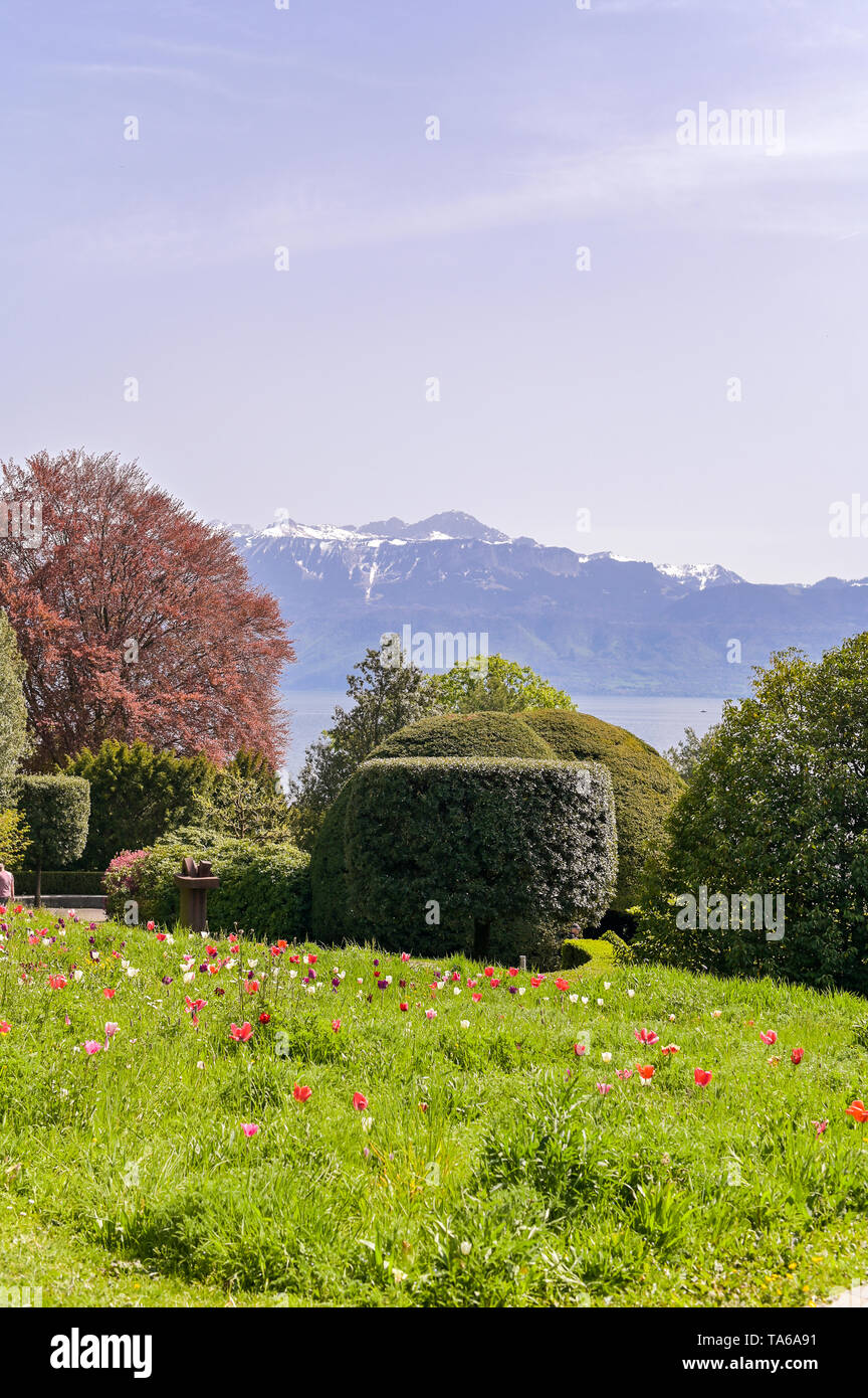 Park alley in the Olympic Museum in Switzerland. Spring grass and flowers in the park - Stock Image