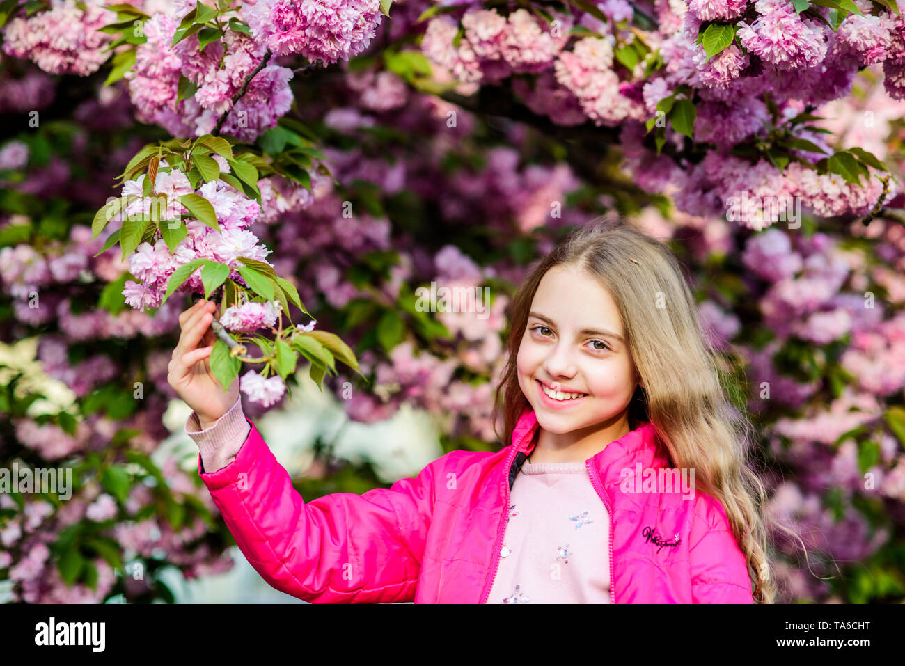Spring style. summer. Childhood beauty. skincare spa. Natural cosmetics for skin. happy girl in cherry flower. Sakura tree blooming. small girl child in spring flower bloom. blossom smell, allergy. - Stock Image
