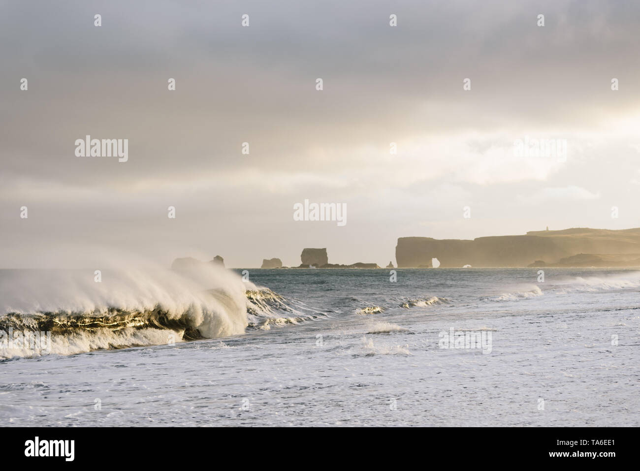 View of Cape Dyrholaey from Reynisfjara Beach, Iceland. Big waves on the ocean. Stormy weather with strong wind. Beautiful evening sunlight Stock Photo