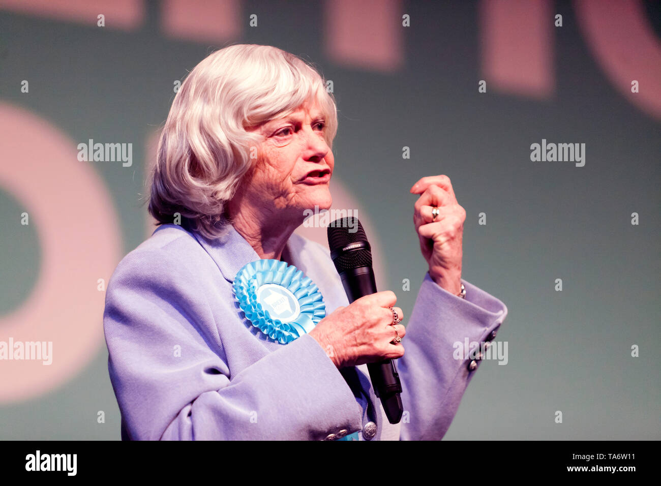 Ann Widdecombe addressing the supporters, during a Brexit Party Rally at Olympia, London. Stock Photo