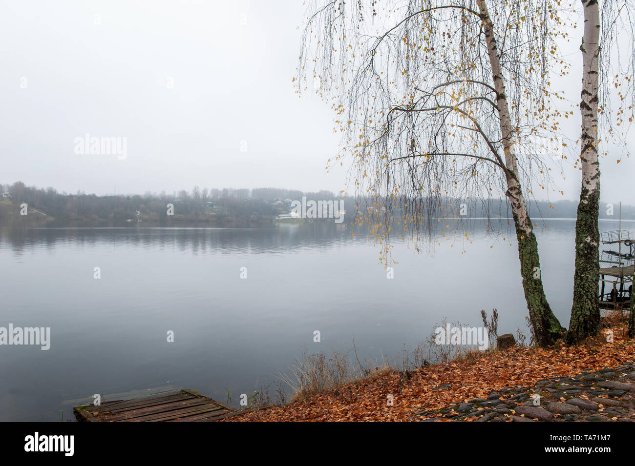 Beautiful view of the Volga river Embankment in late autumn. Ples old Russian city in Russia the City is associated with the great Russian artist Levi - Stock Image