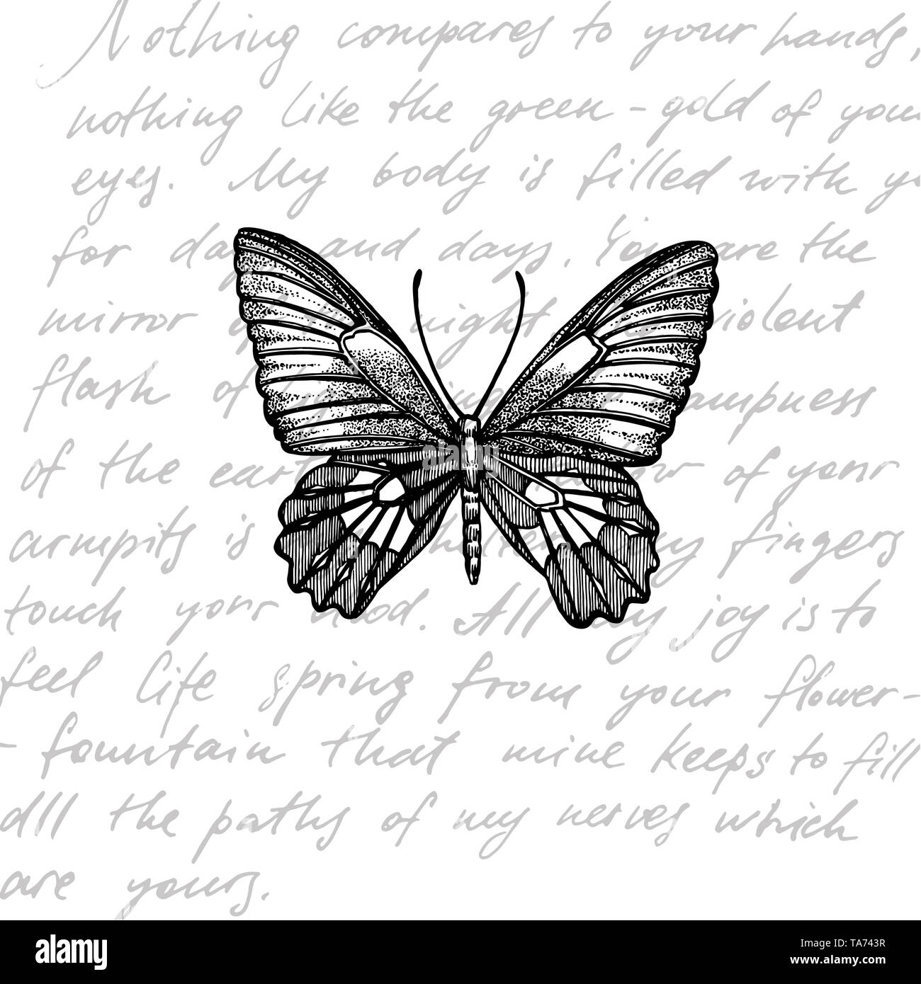 Butterfly Wallpaper Black And White Stock Photos Images Alamy
