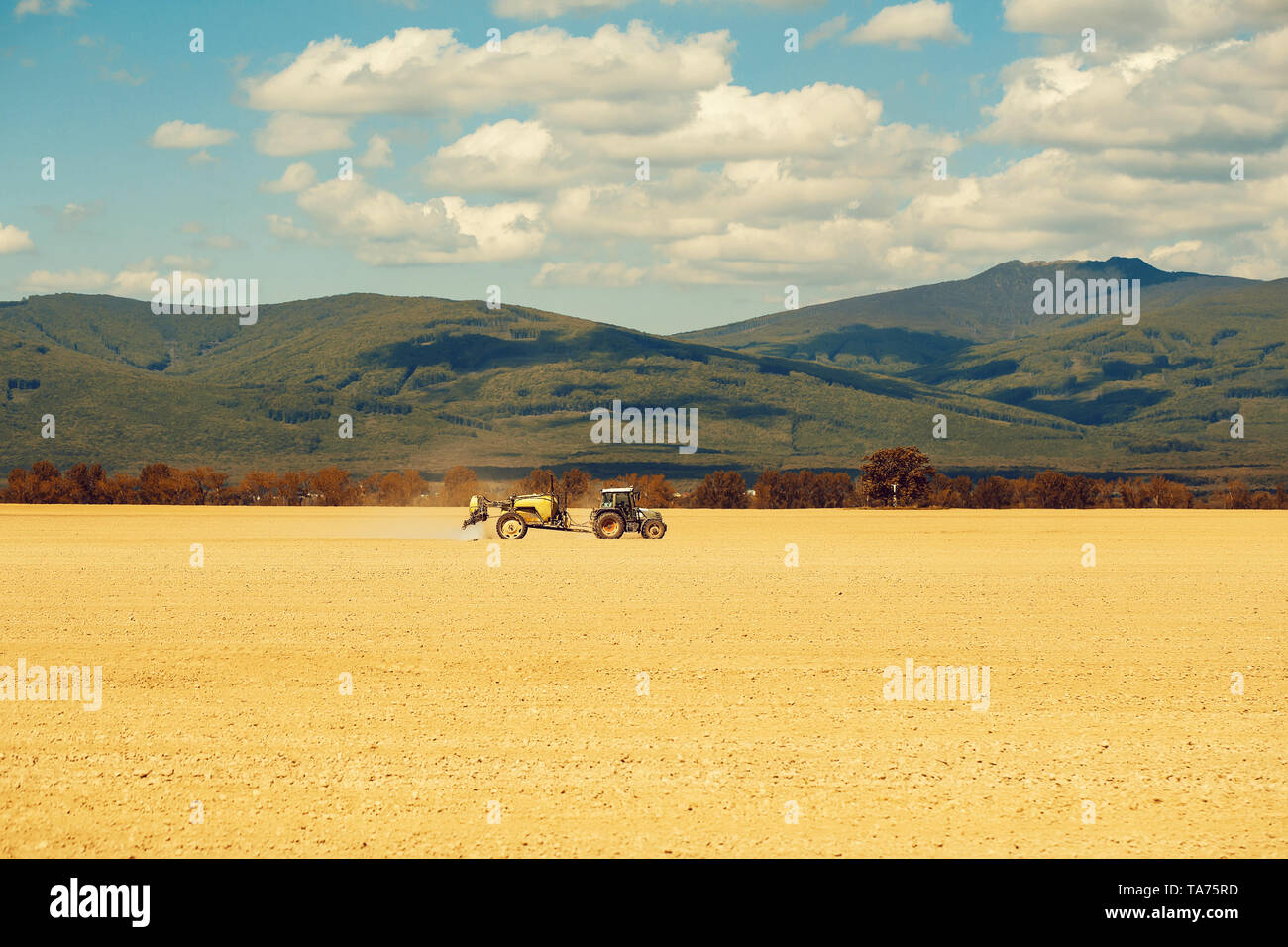 Farm tractor drives in field - Stock Image