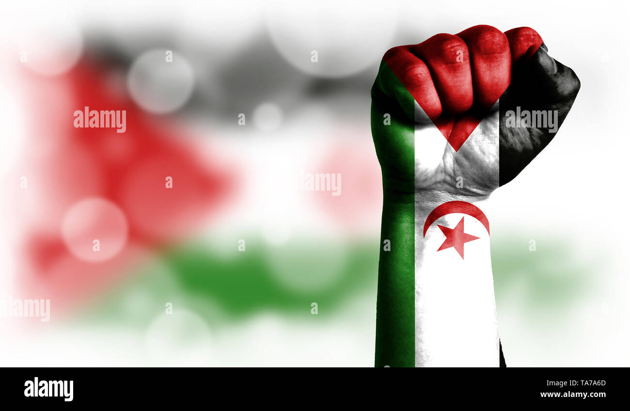 Flag of Western Sahara painted on male fist, strength,power,concept of conflict. On a blurred background with a good place for your text. - Stock Image